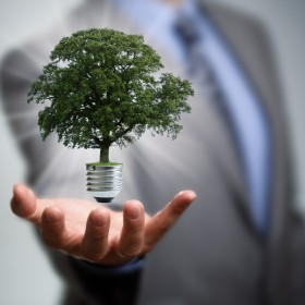 How to make your business carbon friendl
