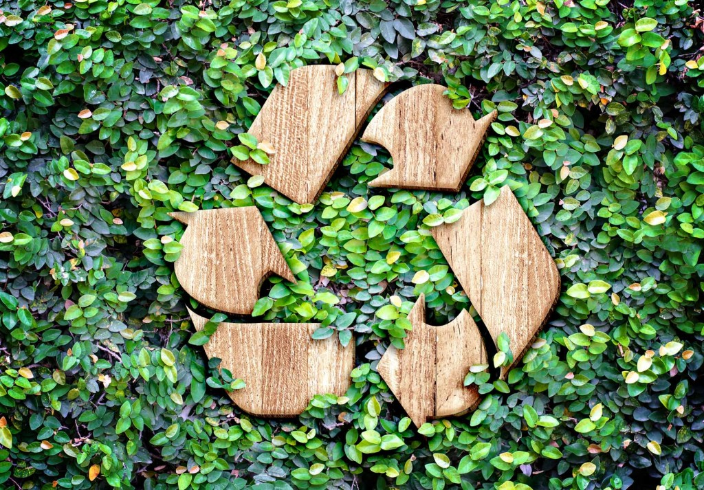 Why recycle? 12 ways you can recycle like a pro